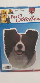 Border Collie Aufkleber
